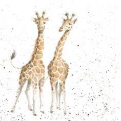 Hannah Dale - Lofty, impression signée et montée, 40 x 40 cm Giraffe Crafts, Giraffe Art, Giraffes, Animal Paintings, Animal Drawings, Wrendale Designs, Painting For Kids, Children Painting, African Animals
