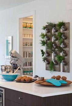 Tips para decorar la cocina con plantas