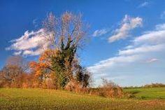 Felder bei Hackenbroich