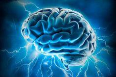 Dr. Kharrazian- thyroid and your brain