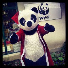 Happy Holidays panda