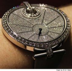 $96,500 Women's Watches 3