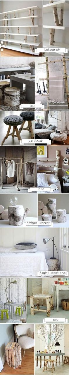 DIY DECORATION BOULEAU by Krista.S