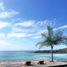 www.casafaly.com Wild Nature, Madagascar, Villa, Beach, Water, Travel, Outdoor, Gripe Water, Outdoors