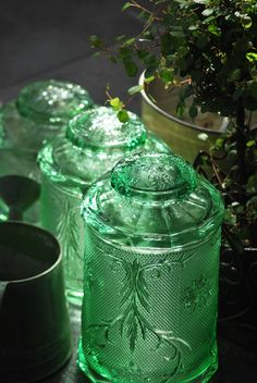 Green Depression Glass Canisters Would love to find a set of these. So pretty! Love Vintage, Vintage Green, Glass Canisters, Glass Bottles, Kitchen Canisters, Kitchenware, Perfume Bottles, Just In Case, Just For You