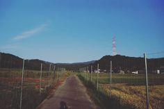 #三重県旅行シリーズ NO.2  本日2枚目の写真 さっきの写真も早朝 #散歩 で撮影しました  周りは #田んぼ で #空 色もきれいに出てて良かったです 朝は空気が澄んでて気持ち良かった 写真を見てよかったらいいねやコメントをもらえると嬉しいです . . #写真好きな人と繋がりたい #写真撮ってる人と繋がりたい #カメラ好きな人と繋がりたい #ファインダー越しの私の世界 #フォロー #写真部 . #IGersJP #followme #like4like #instafollow #tagforlikes #followback #follow4follow #webstagram #likeforlike #japan #instagood #モデル募集 . コンテストタグ #WeekendHashtagProject . #PhotoOfTheDay . #JapanHashtagProject . #instaderby . #フォトコンテストOsaka2015 . #WHPhideandseek .