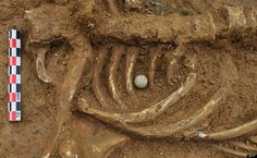 """Belgian archeologists dug up the remains of a soldier who is believed to have died during the Battle of Waterloo, nearly 200 eyars ago. """"You can almost see him dying,"""" Belgian archeologist Dominique Bosquet told Agence France Presse. (Photo: AFP)"""