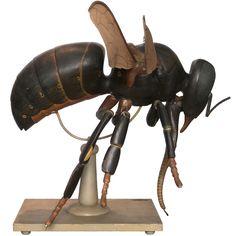 Anatomical Model Of A Bee / Germany /  circa 1920 / Wood, fabric, metal /   Creator: Louis M. Meusel
