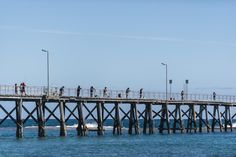 With a beautiful and relaxing scenery, Port Noarlunga Jetty is one of the most…