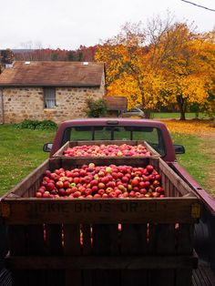 cider press party .... our old neighbor does this with his LARGE family every year with Halloween costumes, everyone brings recycled jugs, they fill a truckbed with apples from Eastern Wash., and their family even has a 100 yr old working press ... we felt so lucky to join in