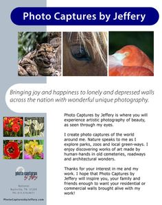 I am wanting you to further assist me in spreading the word about my photography. I have created a national flyer for those that live outside of the Nashville TN/Middle TN area. It can be printed off and placed at your work place break room or any community bulletin board.  You can view and download the flyer by clicking the link below:  http://www.photocapturesbyjeffery.com/national-flyer.pdf