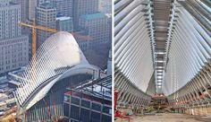 World Trade Center Transportation Hub - Curbed NY