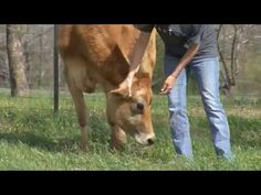 Farm Families of Mississippi | Growing Mississippi