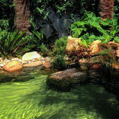 Arquiteta paisagista🍀Landscape architect Paisagismo, jardins, meus trabalhos e viagens🍃Landscape, gardens, my work and trips🌿 São Paulo-SP Brasil💚