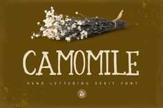 Camomile Font by Webvilla available for $10.00 at FontBundles.net