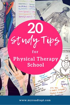Do you struggle with studying for PT school? Apply these study tips today to get more prepared for your exams! Physical Therapy Student, Pediatric Physical Therapy, Occupational Therapy, Physical Education, Nursing Student Organization, School Organization, Kinesiology Major, Therapist School, Pta Programs