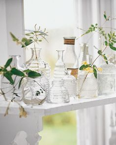 Bee-Guiling Vases                                                        An assortment of pressed-glass honey jars