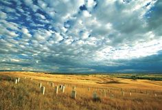 Little Big Horn Battlefield, Montana: site of Custer's Last Stand, aka Custer's Ultimate Folly, the battle that sealed the fate of the wild American Indian.