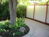 Are you in need of a backyard makeover? If you want to do a DIY yard crashers edition on your backyard, these backyard ideas will help you achieve that! Privacy Screen Outdoor, Backyard Privacy, Backyard Fences, Garden Fencing, Backyard Landscaping, Backyard Ideas, Outdoor Ideas, Landscaping Ideas, Reed Fencing