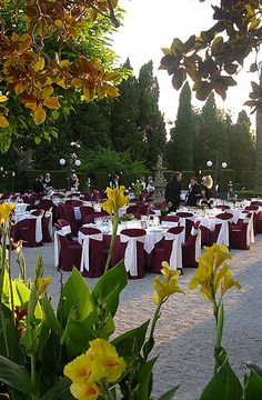 Maroon Wedding Banquet-don't know why but the indians,gypsies,and wedding parties seem to get teh color best. It is very sophisticated if done correctly. I like it with grey or brown. Maroon Wedding, Burgundy Wedding, Fall Wedding, Our Wedding, Dream Wedding, Wedding Table Decorations, Wedding Chairs, Wedding Themes, Wedding Parties