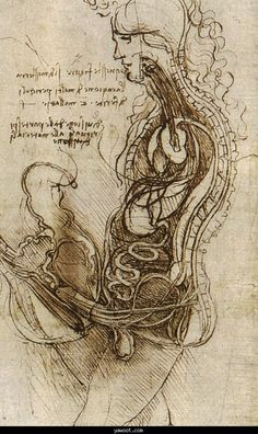 Leonardo da Vinci was a truly brilliant man of art, science, botany, & engineering, hundreds of years ahead of his time. He would perform autopsies to self teach human anatomy.