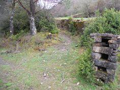 Bien trazado el sendero, inicialmente entre muros