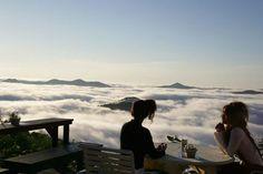 Trip Hotel : la terrasse au-dessus des nuages - Konbini