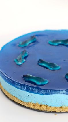 Take a shark-sized bite out of our no-bake Shark Pool Cheesecake, Shark Fin Coconut Pudding, and Shark Truffles! Take a shark-sized bite out of our no-bake Shark Pool Cheesecake, Shark Fin Coconut Pudding, and Shark Truffles! Shark Cupcakes, Shark Cake, Shark Pool, Shark Fin, Whale Sharks, Shark Snacks, Baking Recipes, Dessert Recipes, Delicious Desserts