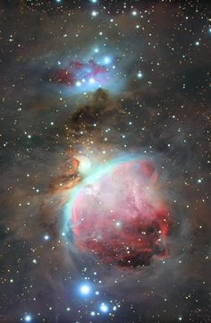 The Great Orion Nebula (M42) Credit: Samuele Gasparini