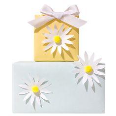 Spring Daisy Gift Wrap | LLK-C.com