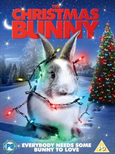 The Christmas bunny Christmas Bunny, Christmas Music, Christmas Movies, Solstice Moon, Winter Solstice, Cold Moon, China Rose, Lucky Star, Streaming Vf