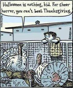 Vegan Animalrights Thanksgiving Turkey Vegan Thanksgiving Thanksgiving Humor Why Vegan
