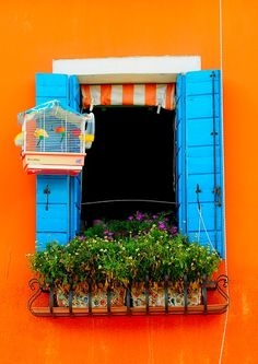 wow! what attention to tasteful details! two perfect complementary colors, orange striped curtain, mosaic flower pots and a charming blue-awning on the birdcage!