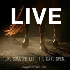 """LIVE like someone left the gate open"""