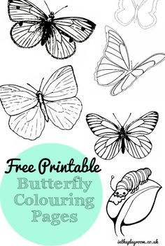 Free Printable Butterfly Colouring Pages