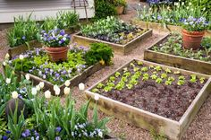 Potager Garden Dishfunctional Designs: Great Ideas For Beautiful DIY Raised Garden Beds - Creative ideas in crafts and upcycled, innovative, repurposed art and home decor. Vegetable Garden Planning, Backyard Vegetable Gardens, Vegetable Garden Design, Potager Garden, Garden Pests, Backyard Farmer, Vegetable Bed, Veg Garden, Garden Table