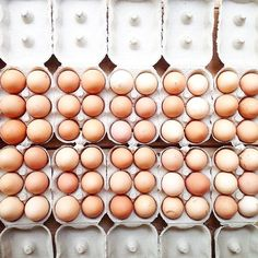 A farm fresh delivery of Castle Farm Midford eggs in our shop - for lunch, for…