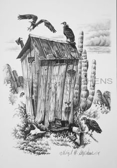 """""""Buzzards Roost"""" outhouse western pencil drawing of a bunch of Buzzards stalking the outhouse by Virgil C. Stephens"""