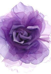 Soft Fabric Purple Rose