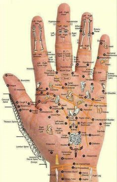 Reflexology chart for hands