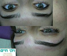 Viki haim - art in your brows