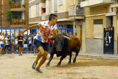 torodigital: Un astado de El Torreón cierra las fiestas en San...