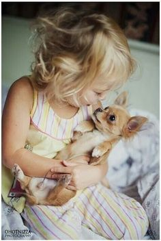 Awww, I love chihuahuas & miss the one I had dearly...important to note that they aren't usually kid-friendly dogs...