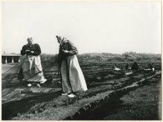 De boetvelden aan de Harstenhoekweg, boetsters repareren de netten. 1957 Jan Stegeman #ZuidHolland #Scheveningen