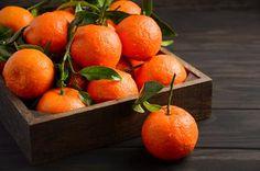 Soha többé nem fogsz mandarint venni: ültesd el egy virágcserépbe és több százat fogsz majd szüretelni - Blikk Rúzs Evergreen Trees, Trees And Shrubs, Fruit Photography, Fruit Trees, Tropical, Orange, Plants, Food, Essen