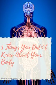 3 Things You Didn't Know About Your Body - iKreate Passions Parasite Cleanse, Human Babies, Bad Posture, Stomach Acid, Easy Detox, Regular Exercise, Total Body, Natural Treatments