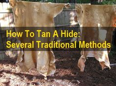 How To Tan A Hide 101 (Via Several Methods)