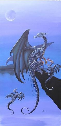 Dragons, so magical
