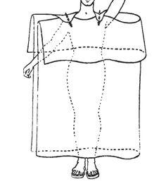 chiton diagram