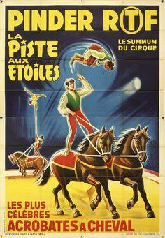 Pinder - Equestrian